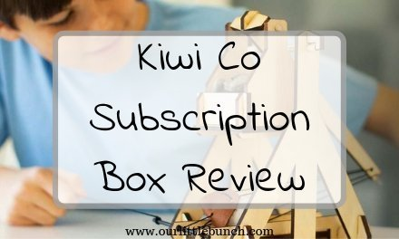 Kiwi Crate / Tinker Crate Review – Feb 2017