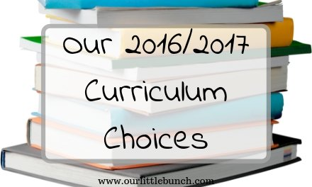 Our 2016/2017 curriculum choices