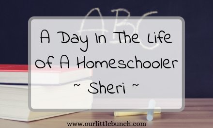 A Day In The Life Of A Homeschooler! – Sheri from MommyHypocrite.com