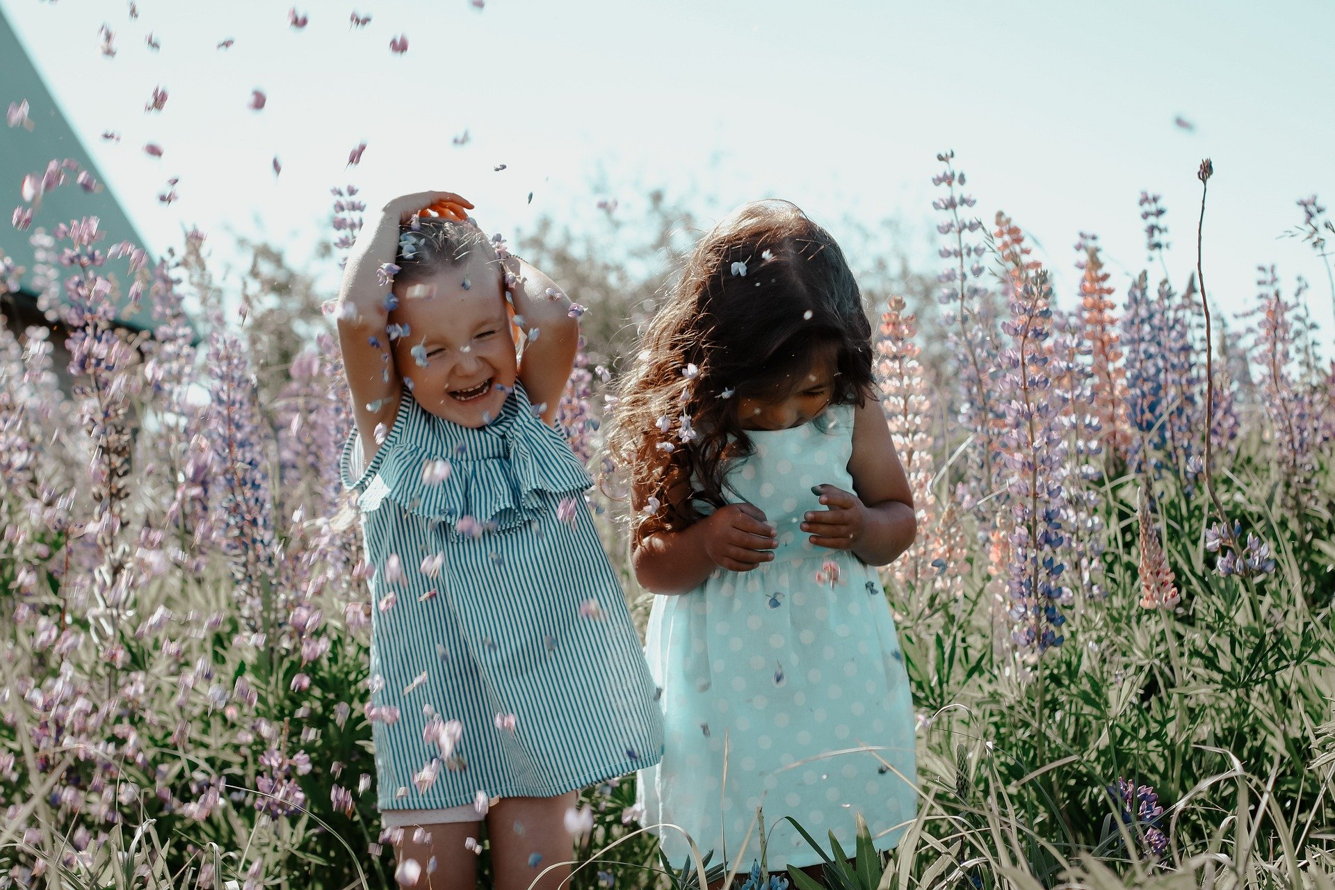 Kids laughing in the flowers