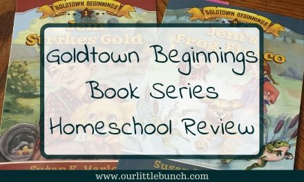 Goldtown Beginnings Book Series – Review
